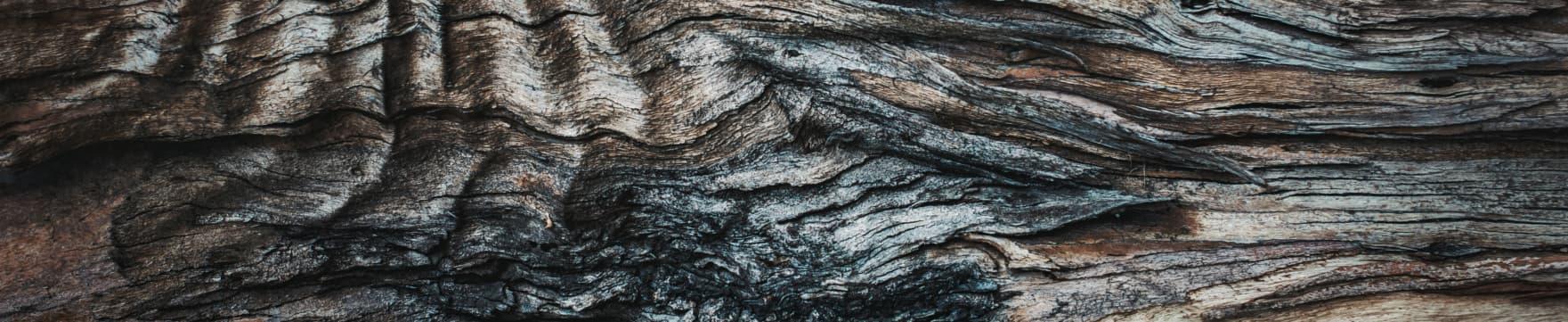 Vorteile eines Holzbaus gegenüber eines Mauerwerksbaus